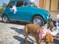 Matrimonio-Licia-e-Max-143